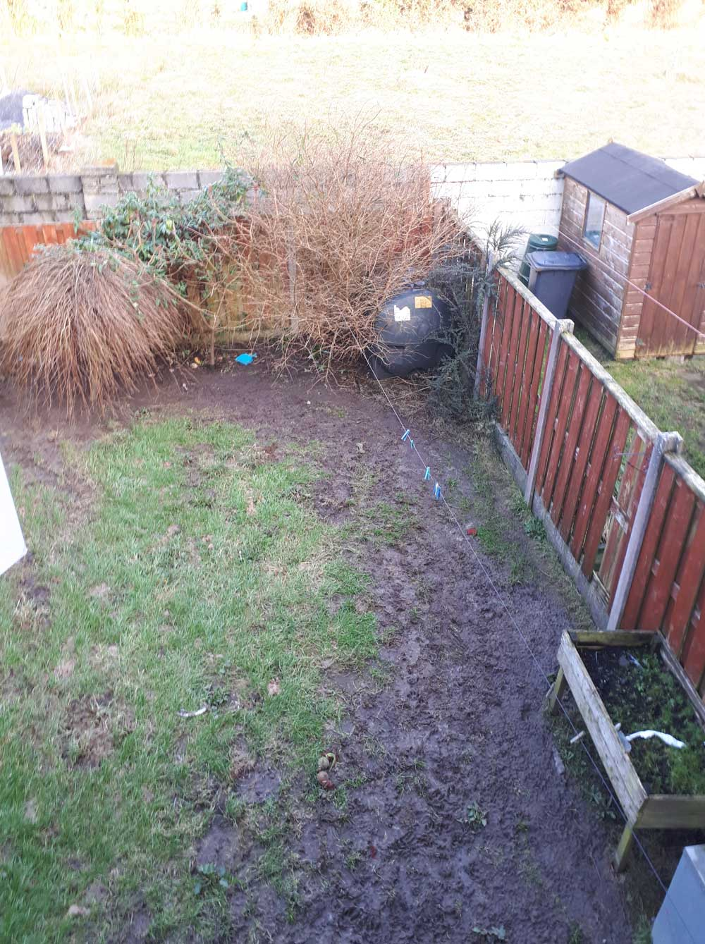 before-garden-landscaping