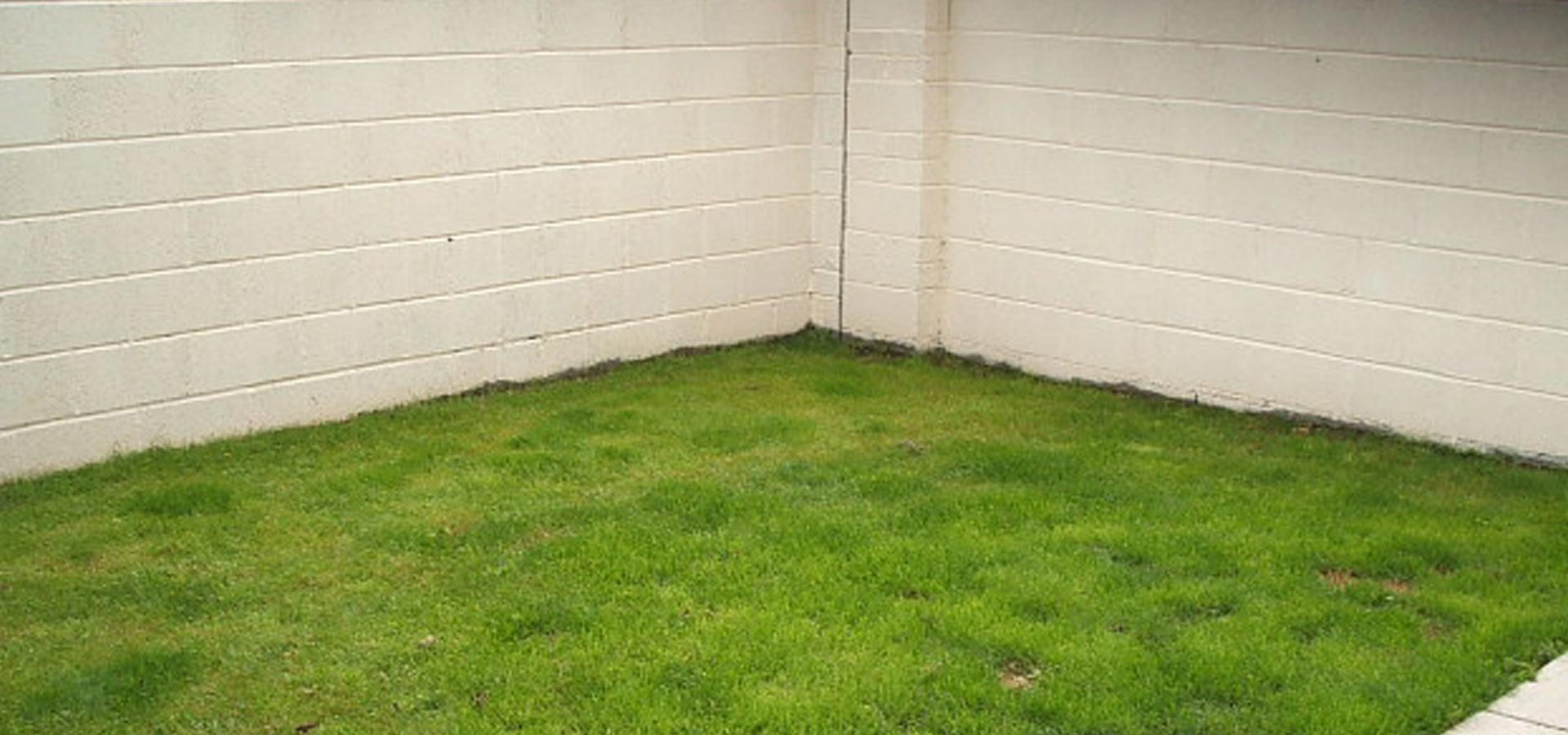 before-landscaping